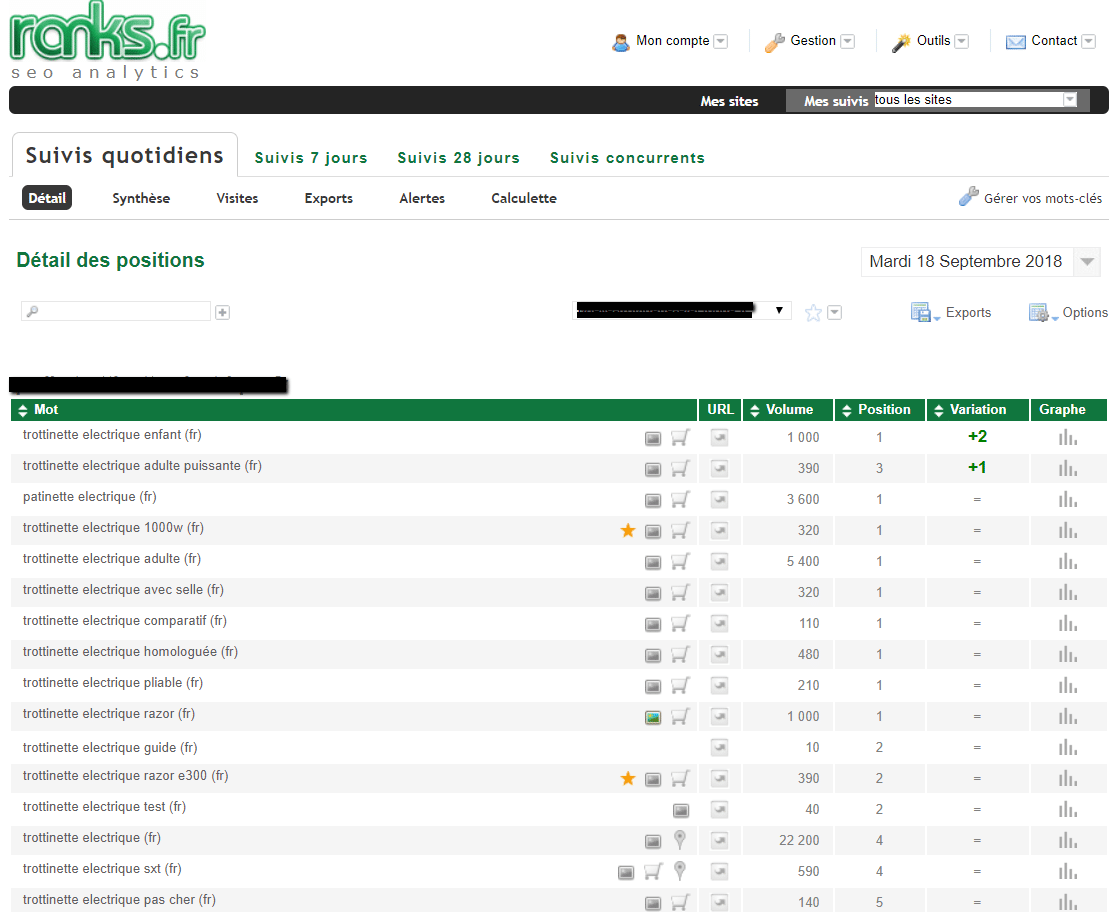 rapport ranks