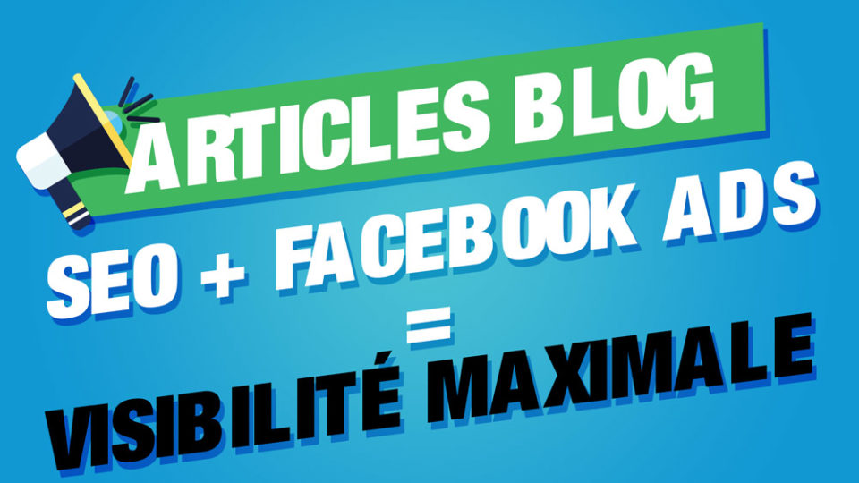 seo + facebook ads