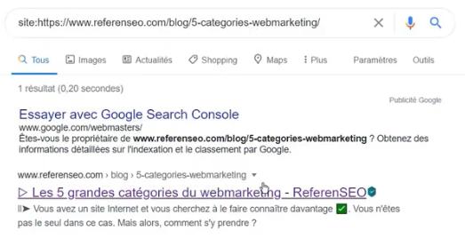 capture d'écran pour vérifier que les pages web sont indexées avec site:url sur Google